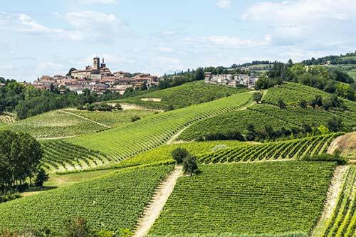 Monferrato Wein-Gebiet